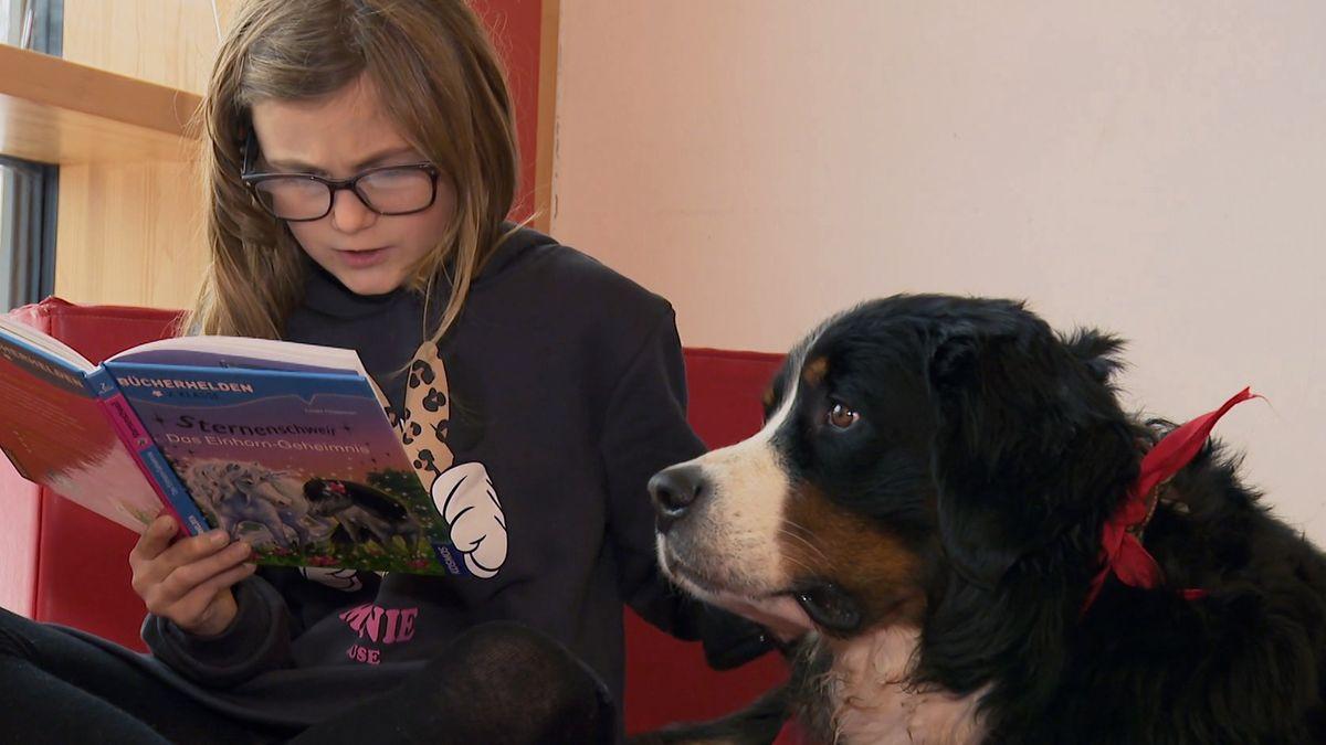 Lesehündin Emma sitzt neben einem Mädchen, das aus einem Buch liest.