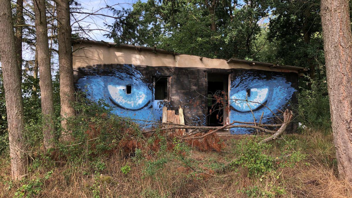 Waldhütte wurde mit zwei blau-schwarzen Augen bemalt.
