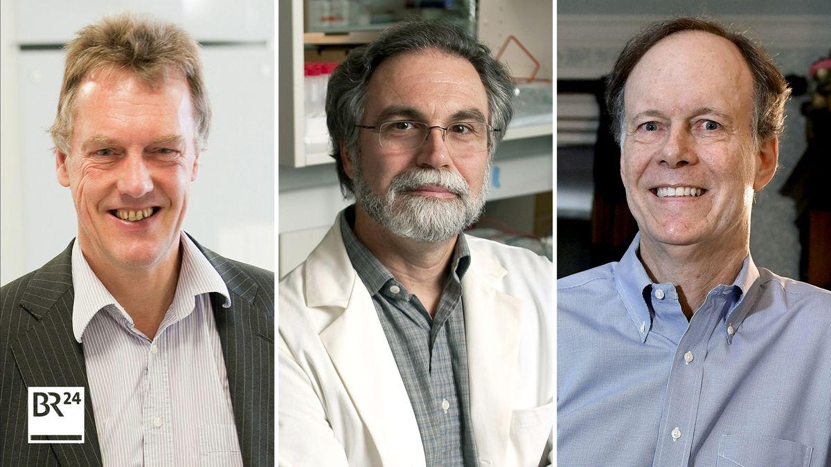Medizin-Nobelpreisträger 2019: Sir Peter Ratcliffe (Großbritannien), Gregg Semenza (USA), William Kaelin (USA)