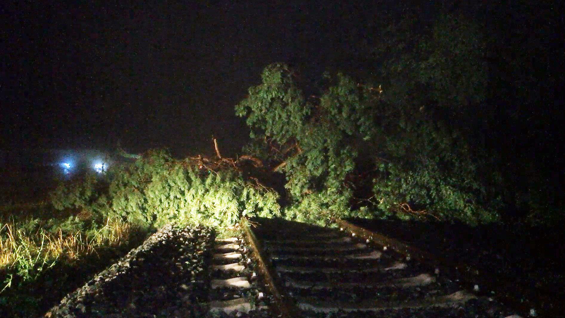 Ein umgestürzter Baum liegt auf Bahnschienen im Landkreis Aschaffenburg.