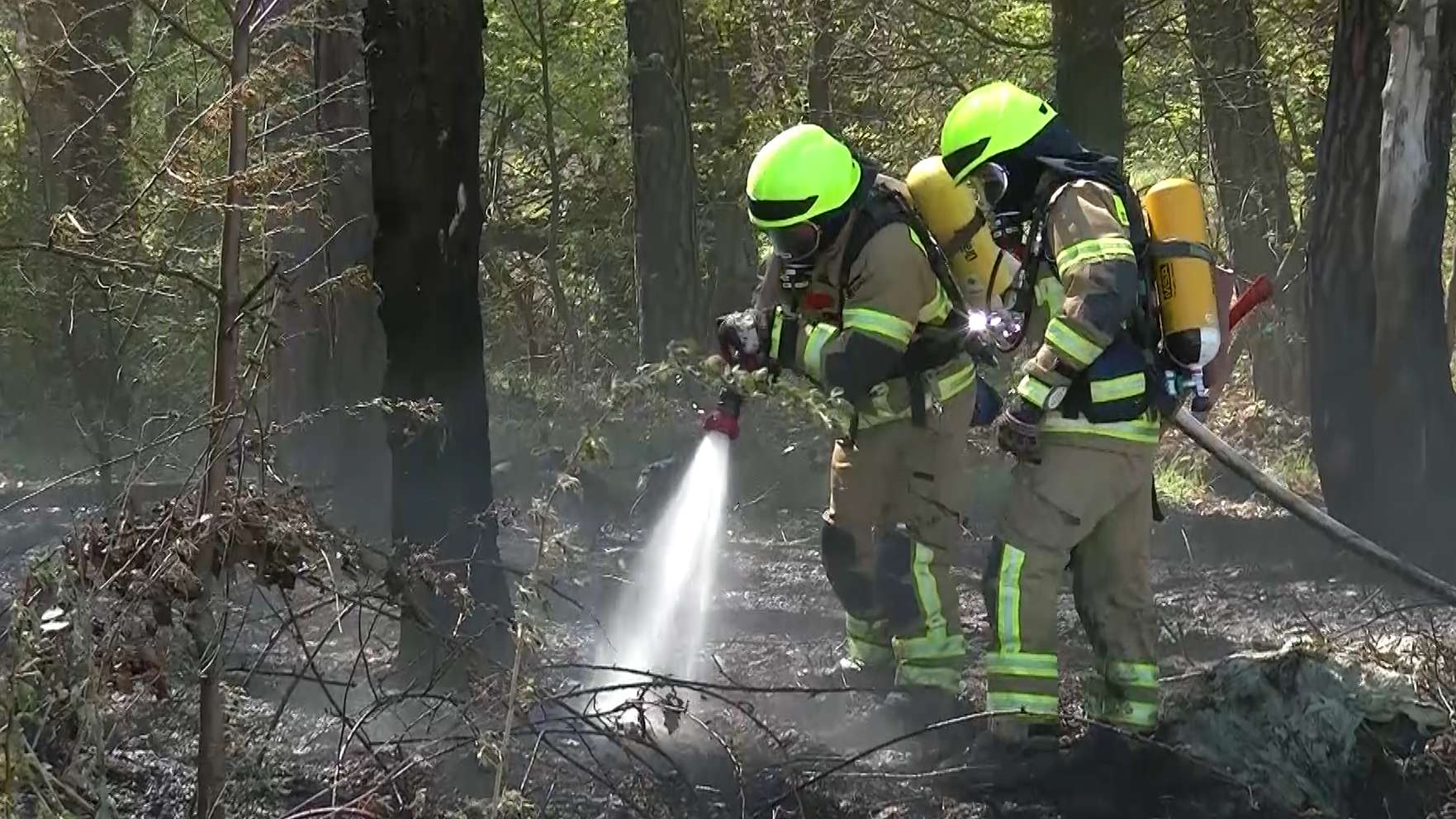 Löscharbeiten in einem Waldstück bei Lind (Lkr. Fürth)