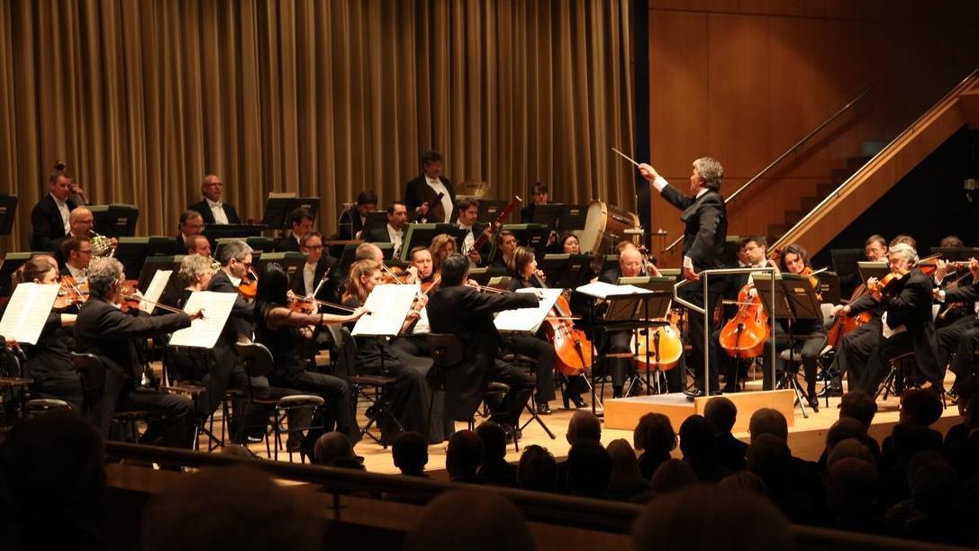 Die Hofer Symphoniker spielen ein Konzert. Streicher und Dirigent sind aus der Zuschauerperspektive zu sehen.