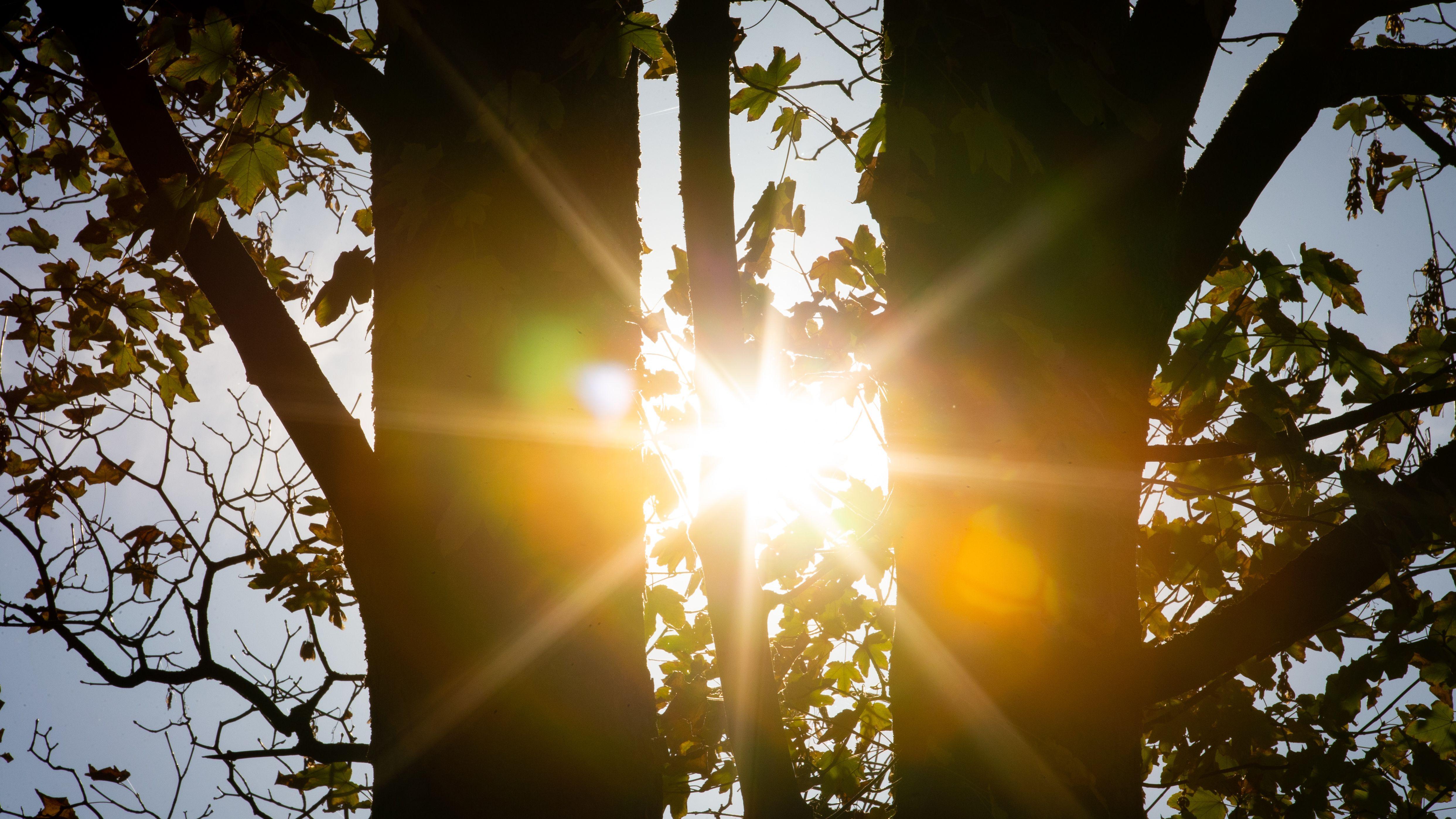 Wegen der andauernden Hitze und Trockenheit hat die Regierung von Niederbayern jetzt Beobachtungsflüge angeordnet.