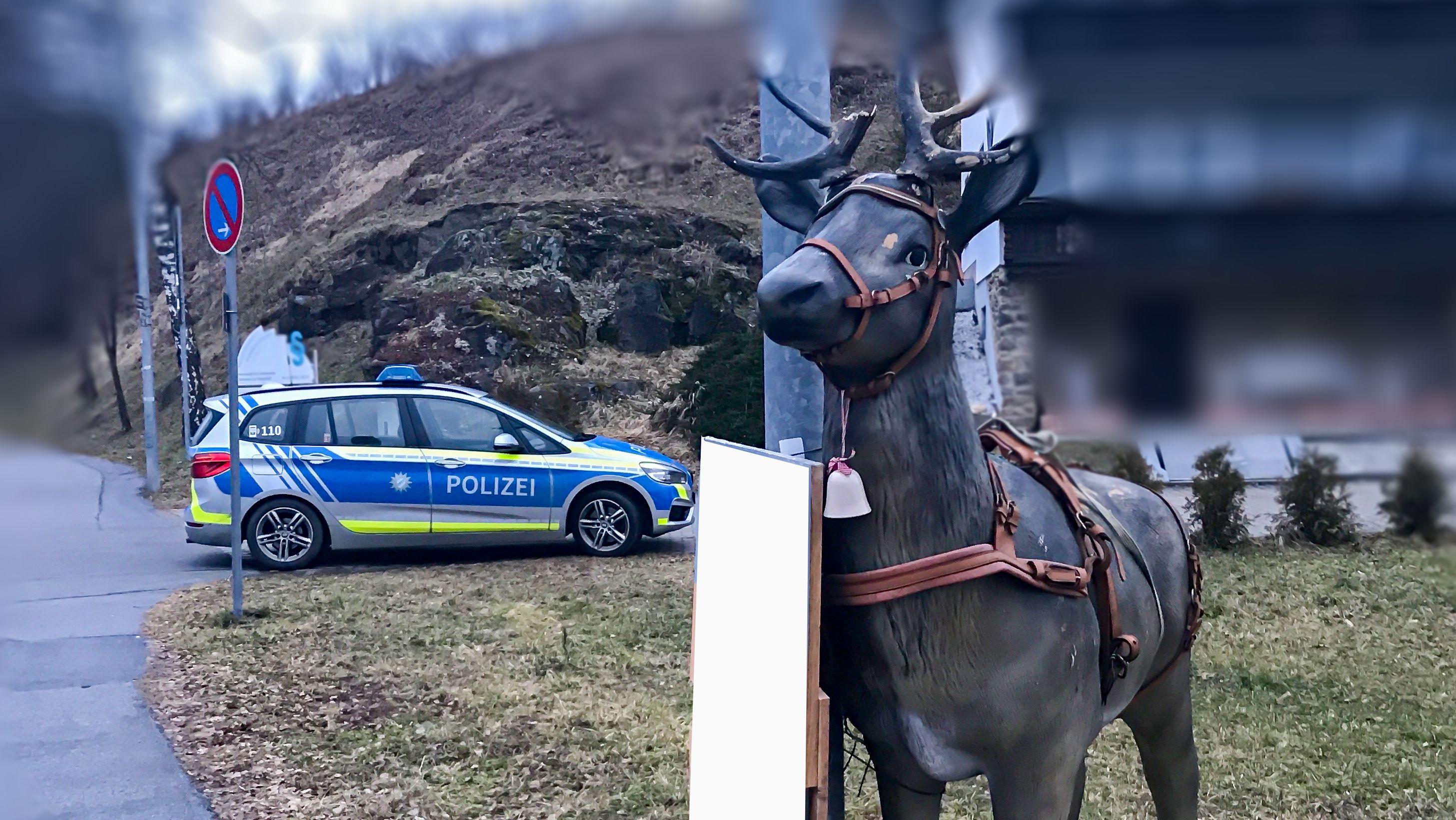 Ein lebensgroßes Hirsch-Modell hat einer Autofahrerin in Zwiesel (Lkr. Regen) einen Schreck eingejagt.