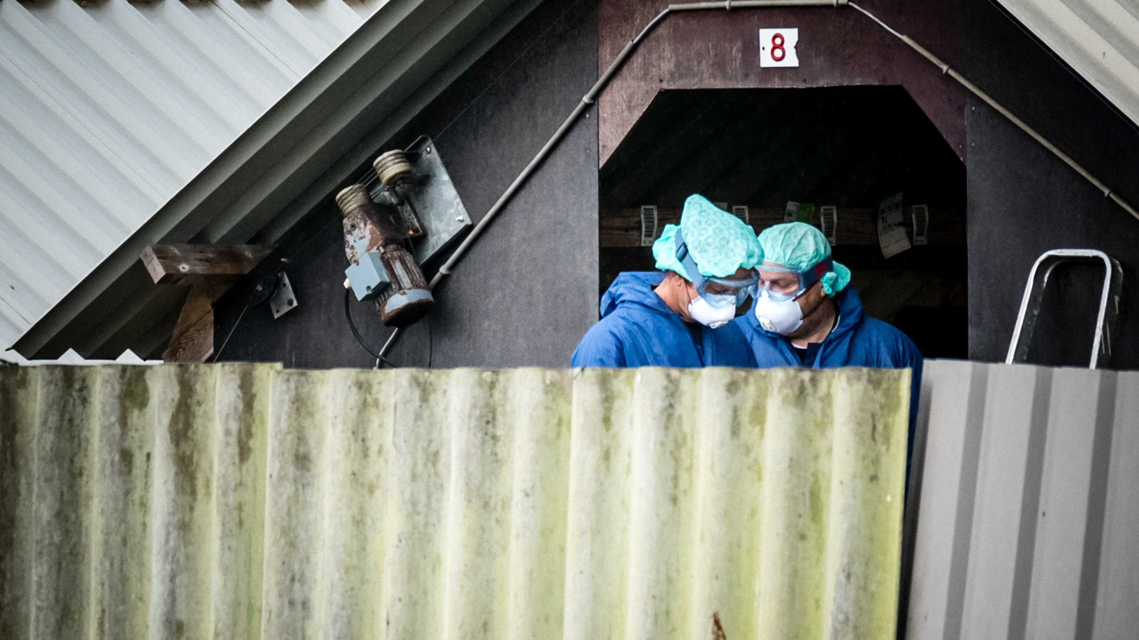 Zwei Männer in blauer Schutzkleidung und Atemschutzmasken vor dem Eingang einer Nerzfarm