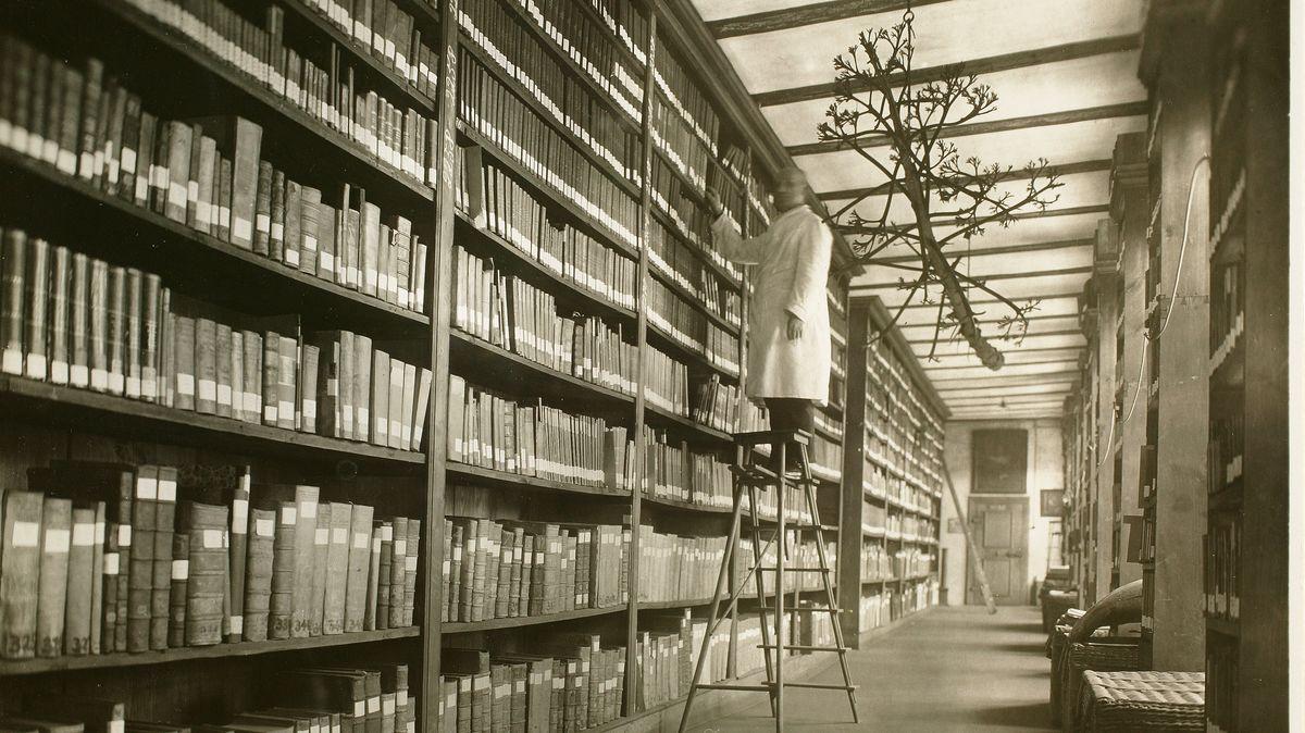 Ansicht der Stadtbibliothek aus dem Jahr 1929
