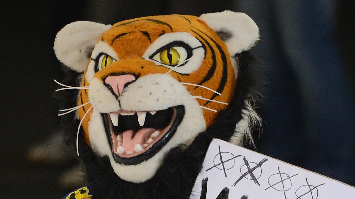 Straubings Maskottchen Tigo