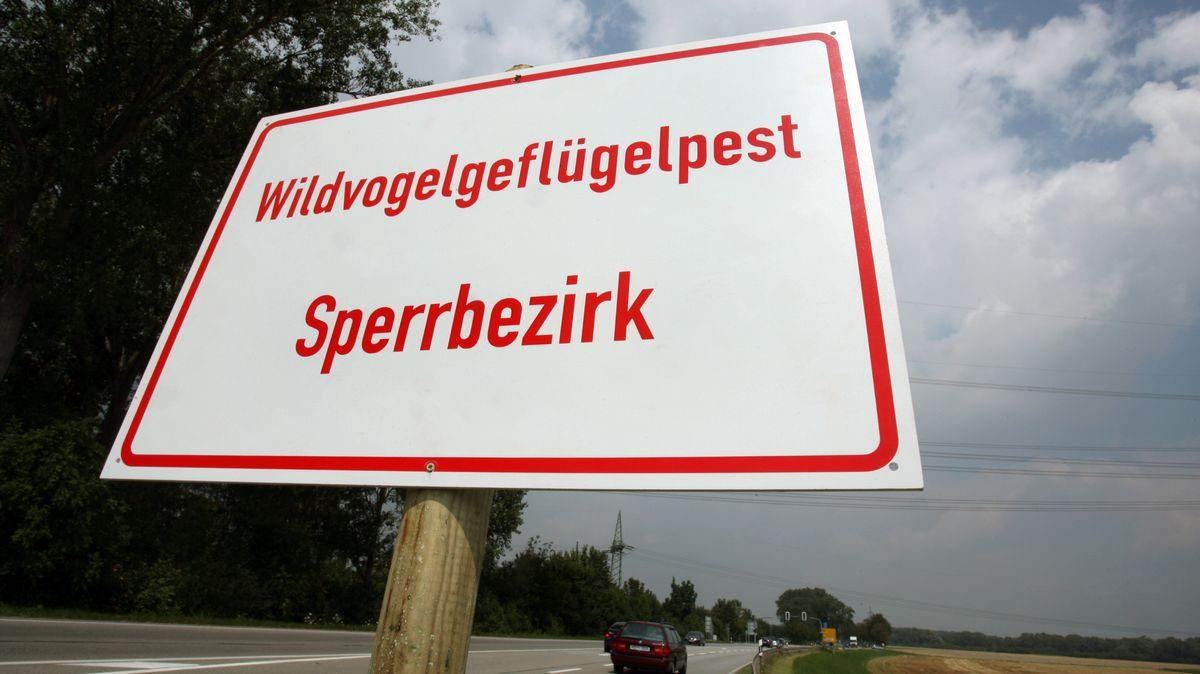 """""""Wildvogelgeflügelpest Sperrbezirk"""" steht auf einem Schild (Symbolbild)"""