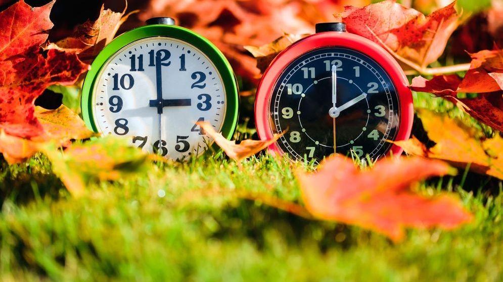 Zwei Wecker mit den Uhrzeiten zwei und drei Uhr im Laub.