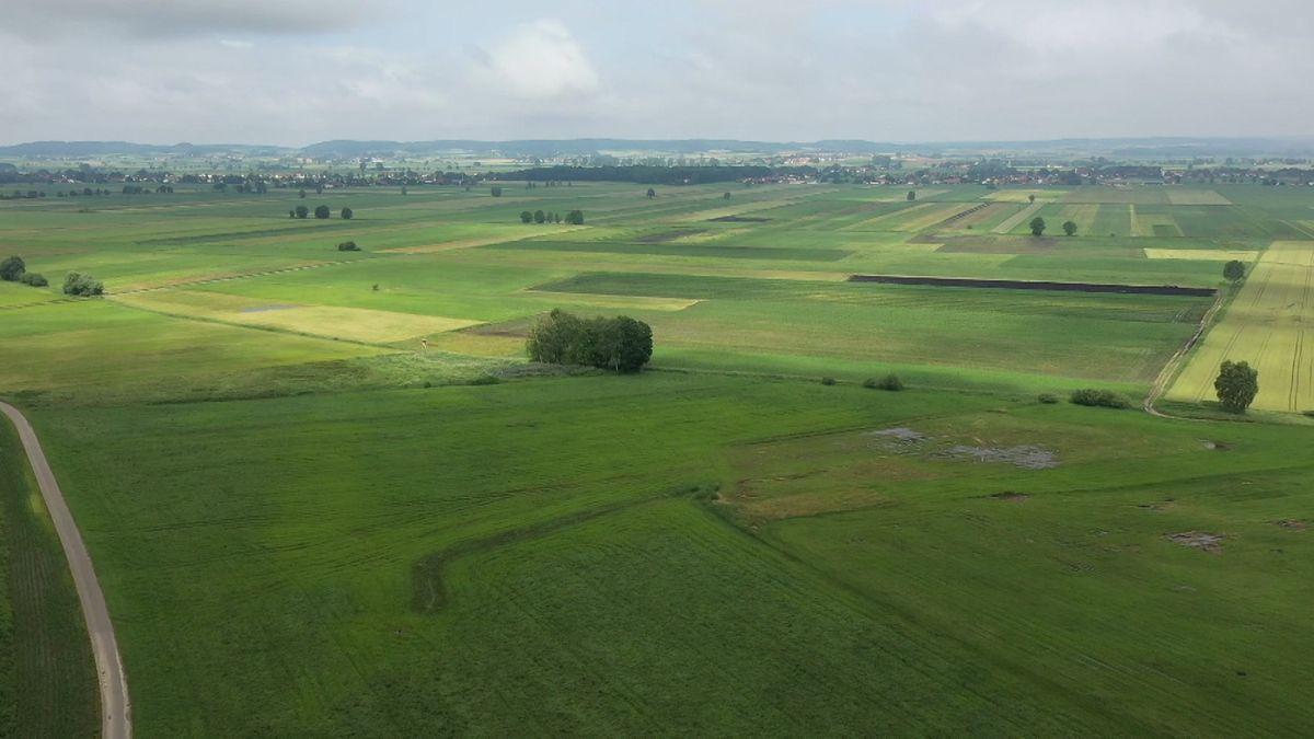 Landschaft im Donaumoos aus der Luft