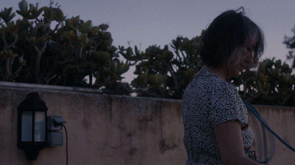 Eine Frau mittleren Alters in der Abenddämmerung vor rötlicher Mauer und Feigenkaktus