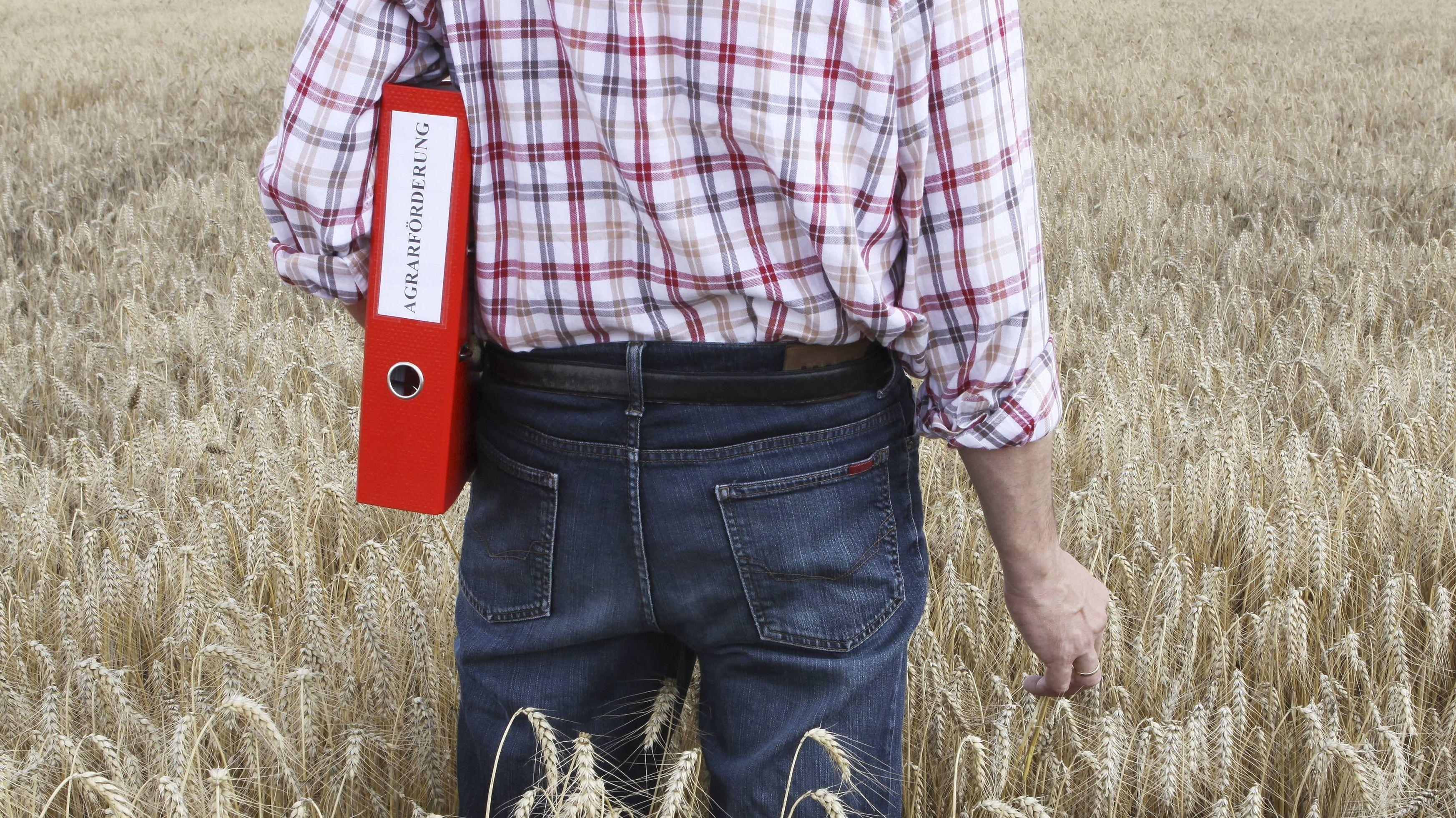 """Mann in Getreidefeld mit einem Ordner unter dem Arm, auf dem """"Agrarförderung"""" steht (Symbolbild)."""