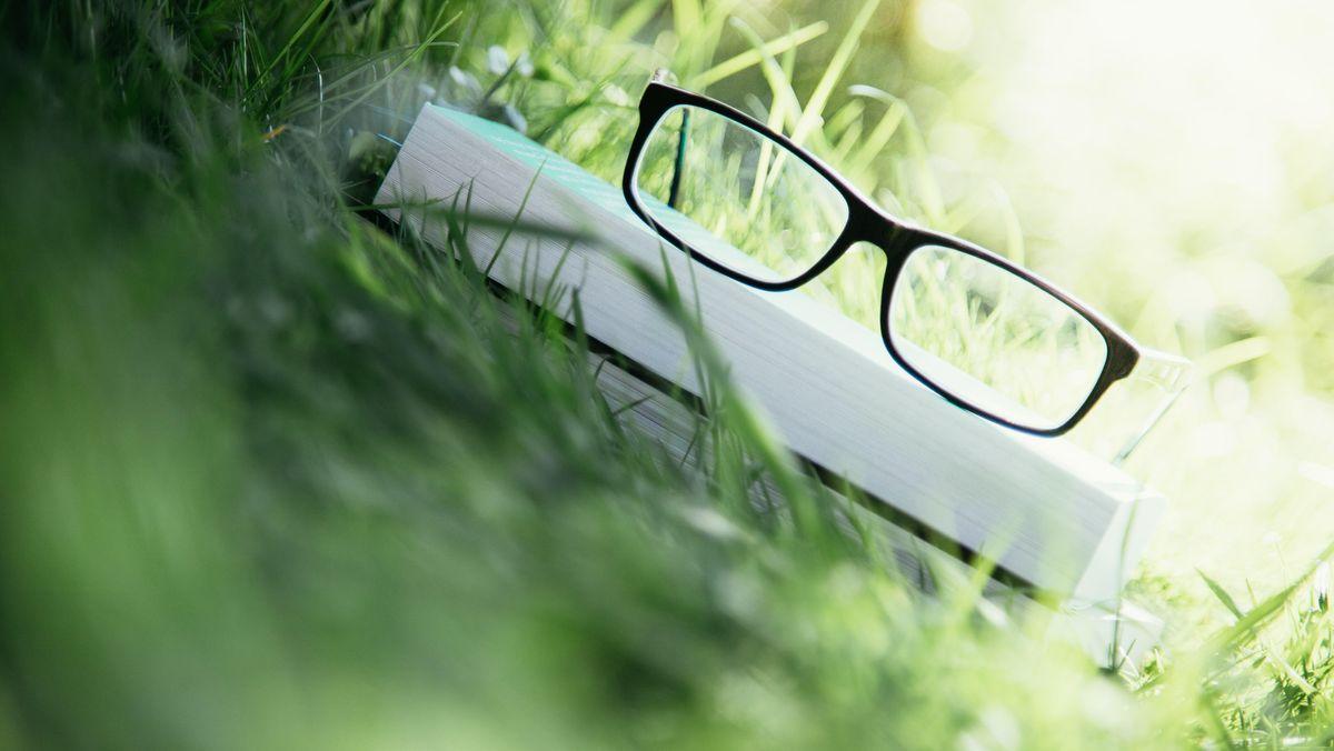Brille auf Buch im Gras mit Sonne