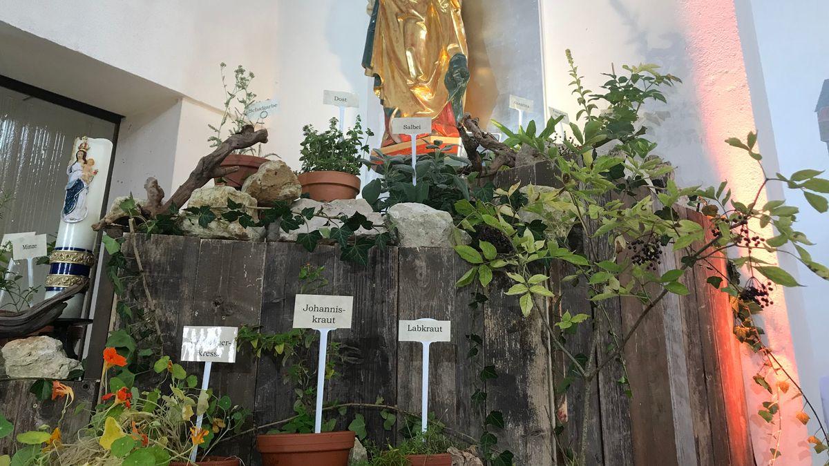 In der Kirche Sankt Elisabeth wurde ein Kräutergarten aufgebaut