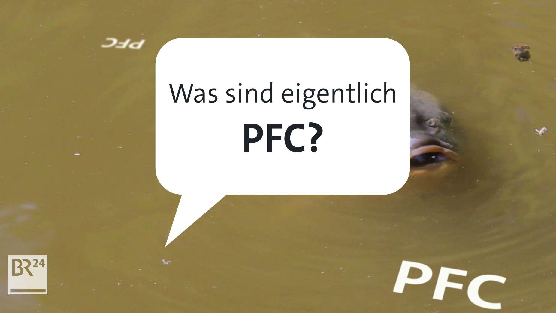 Wo sind PFC enthalten und sind sie schädlich?