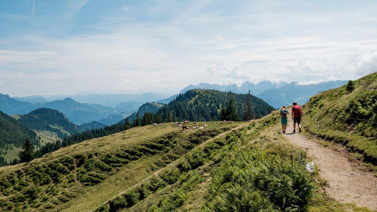 Wanderweg im Chiemgau