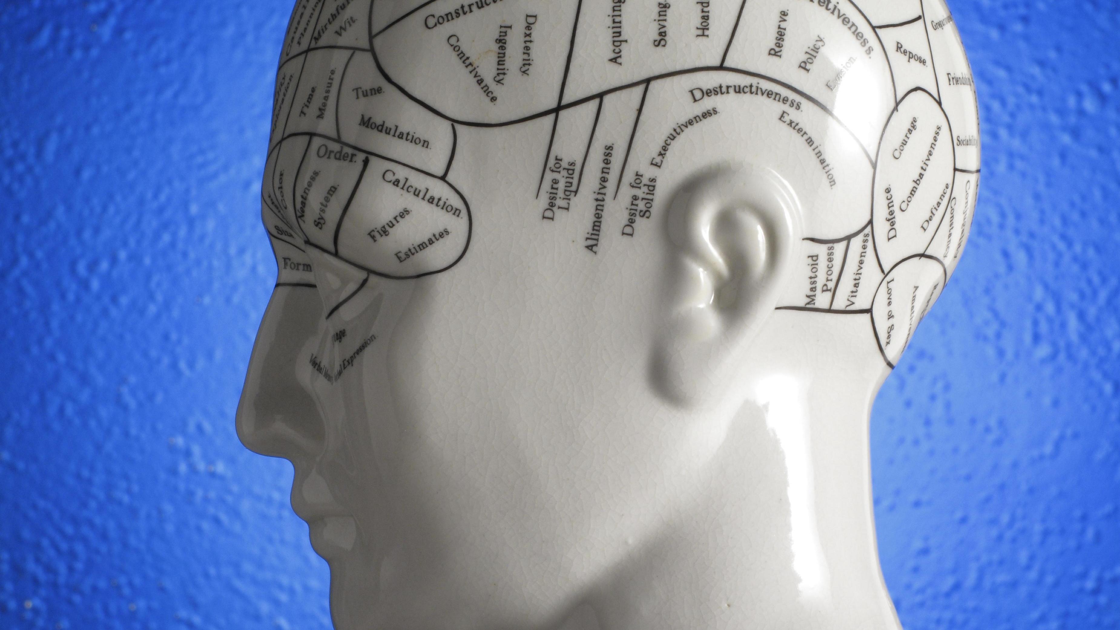 Keramikkopf mit Hirnfunktionen beschriftet