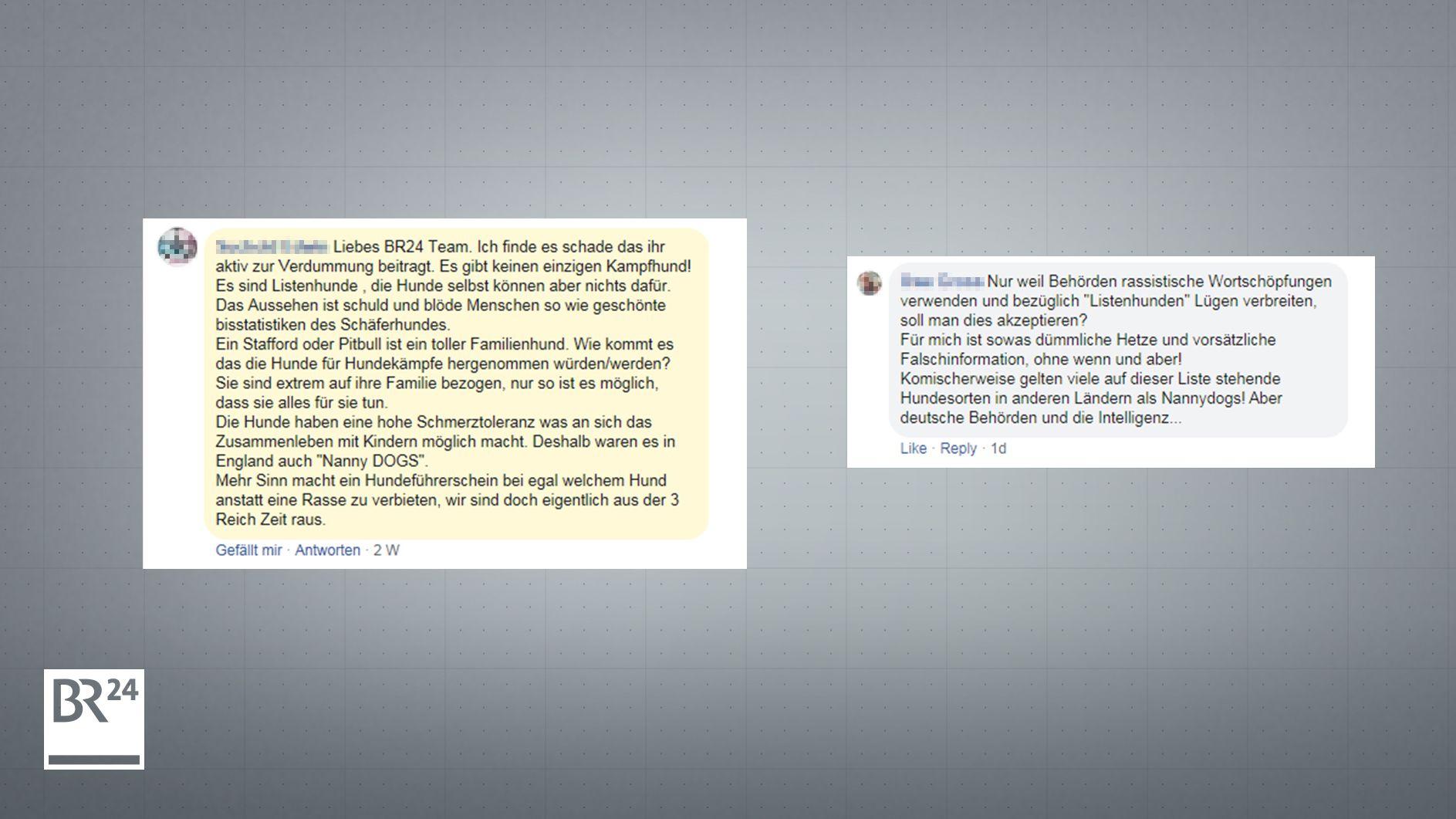 """Facebook-Kommentare zur Diskussion um den Begriff """"Kampfhund"""""""