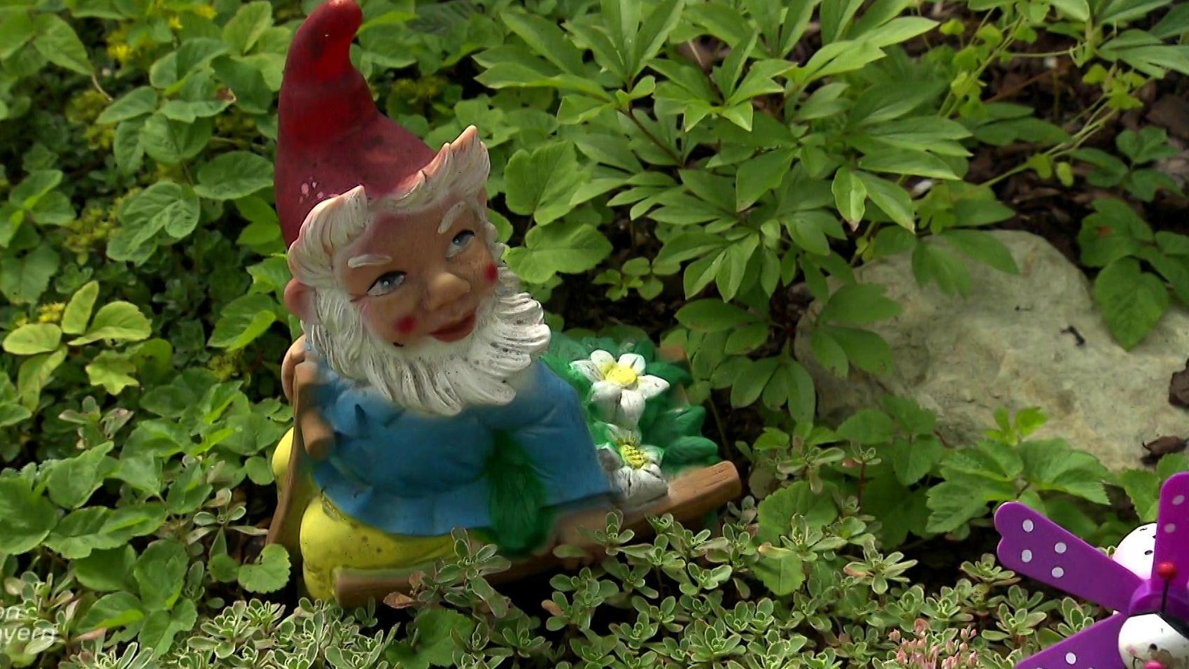 Gartenzwerg im Grünen
