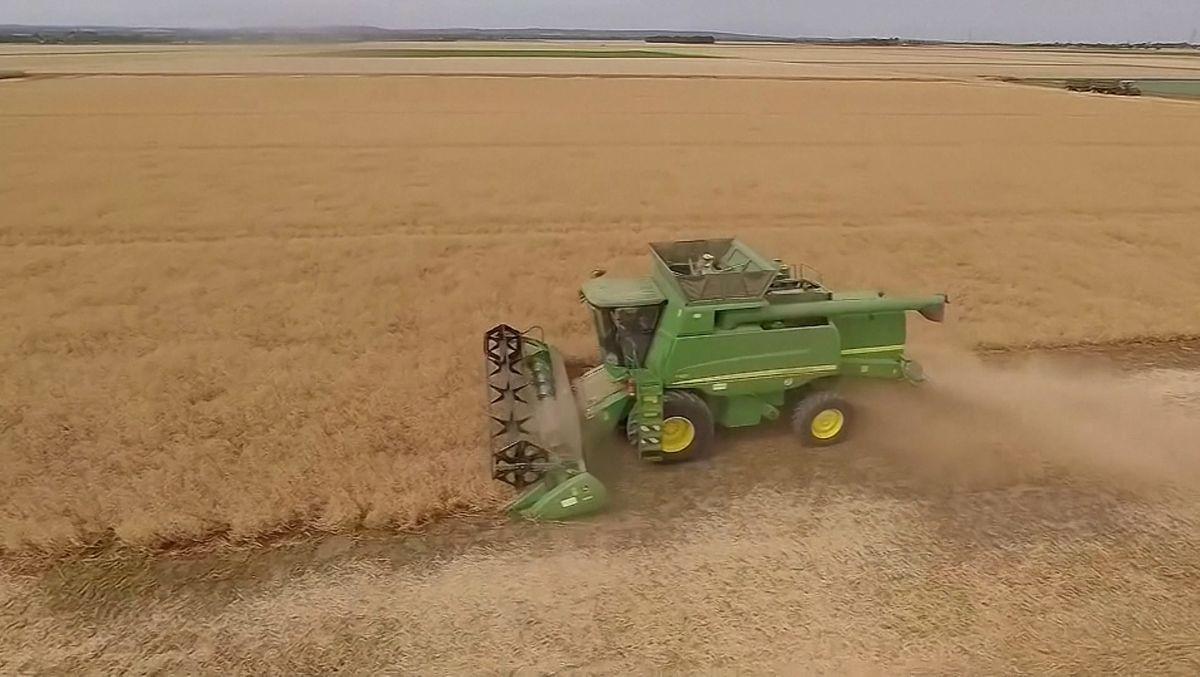 2020 war die dritte unterdurchschnittliche Ernte in Folge. Bauern stehen nun teilweise vor Liquiditätsproblemen.