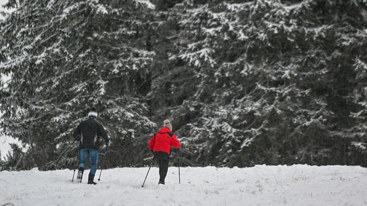 Wanderer gehen auf einer verschneiten Skipiste in Sankt Englmar
