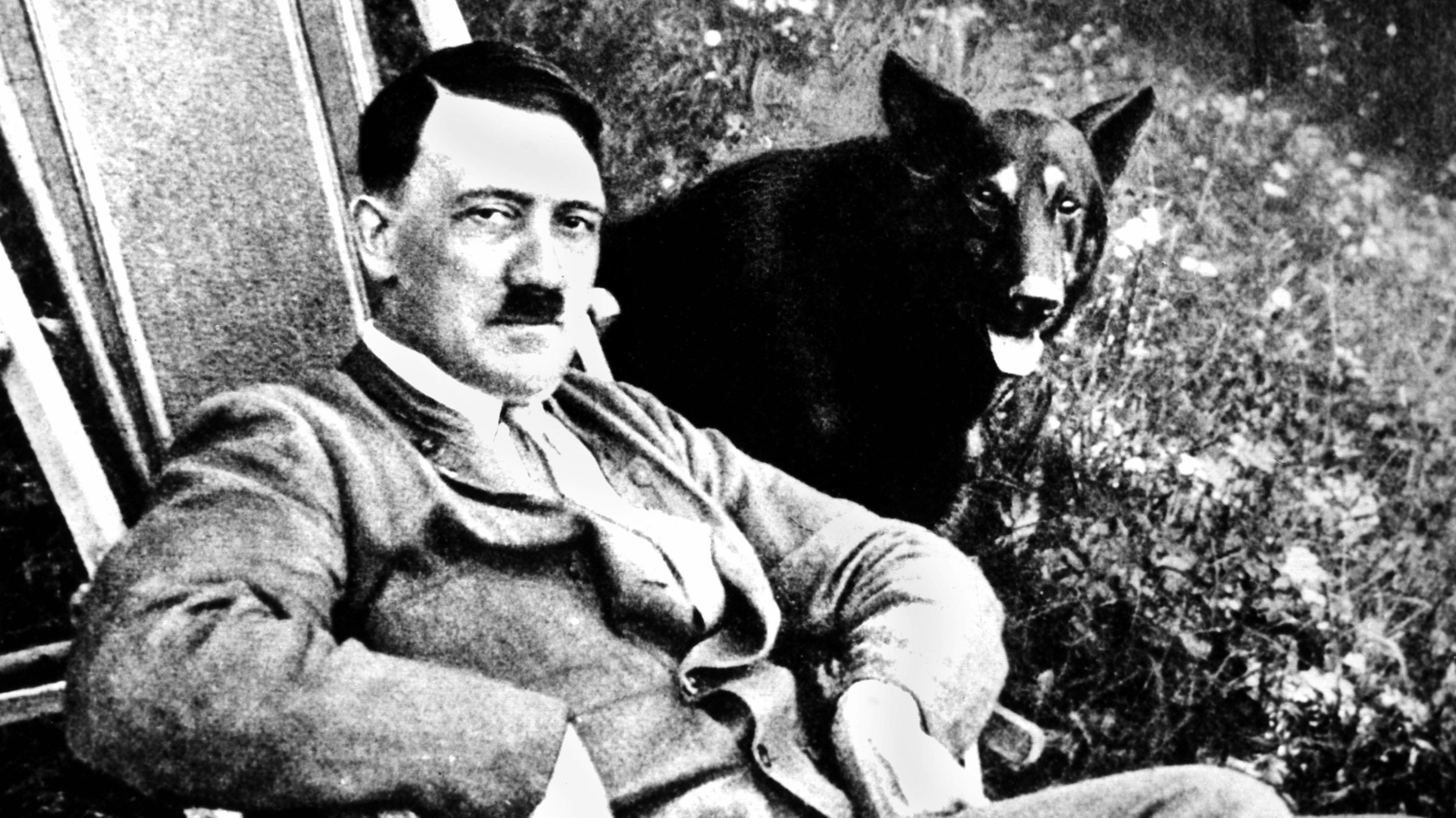 Adolf Hitler im Liegestuhl, daneben sitzt sein Wolfshund im Gras