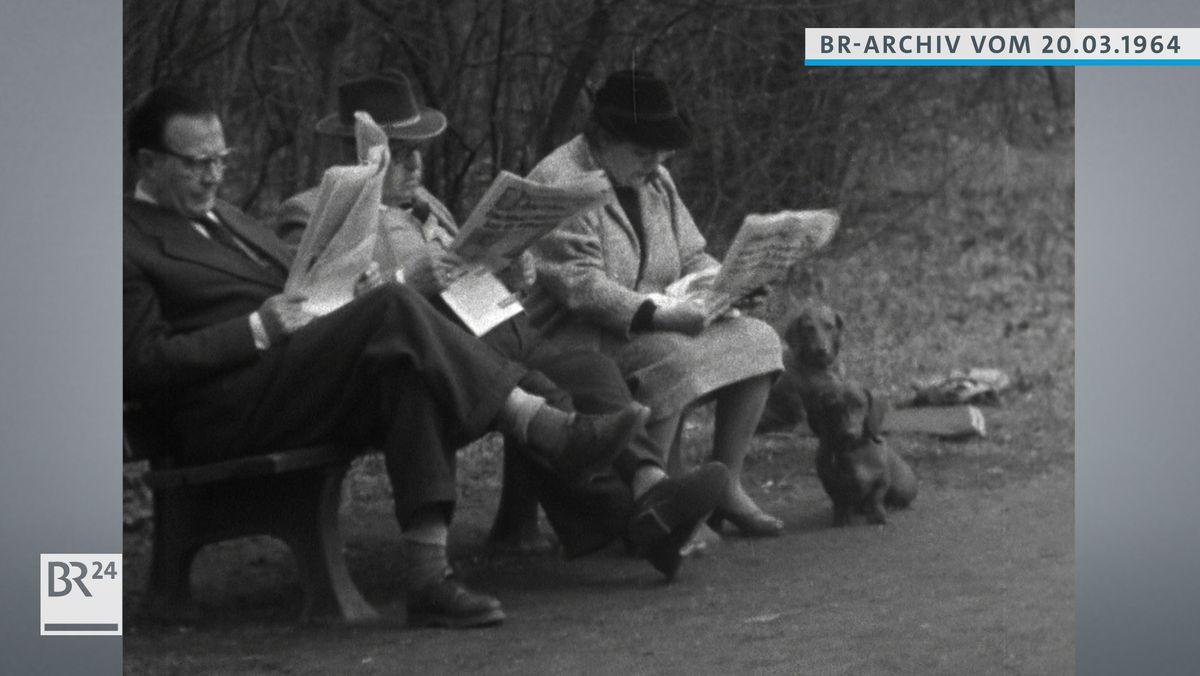Drei Zeitungsleser auf einer Parkbank mit Dackeln.