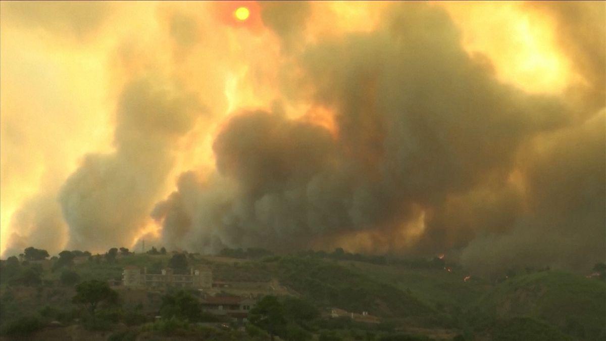 In Griechenland und der Türkei wüten weiter die Waldbrände