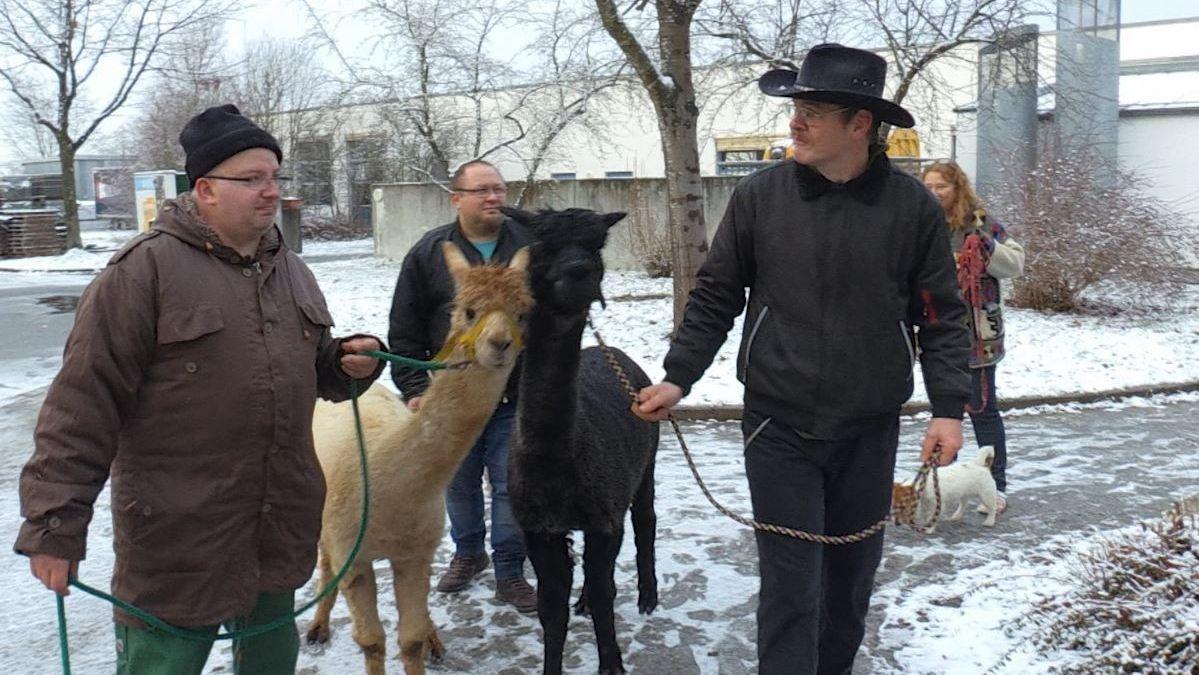 Patienten des Bezirksklinikums Mainkofen mit zwei Alpakas