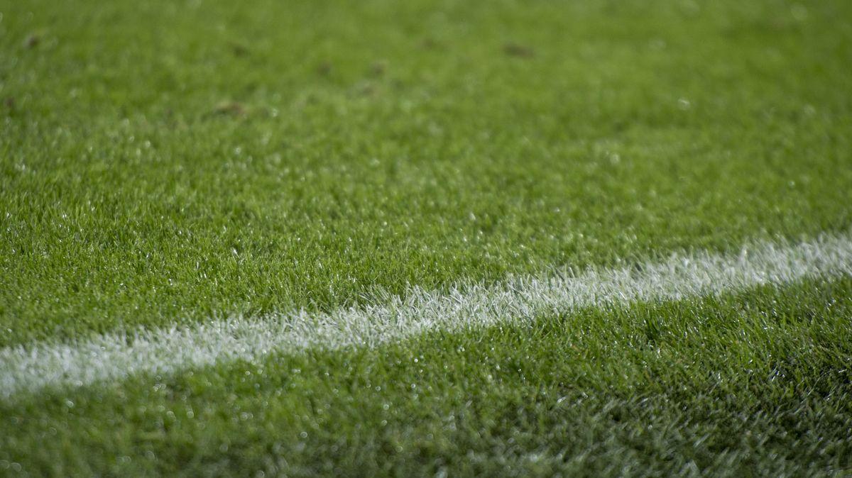Rasen eines Fußballfeld