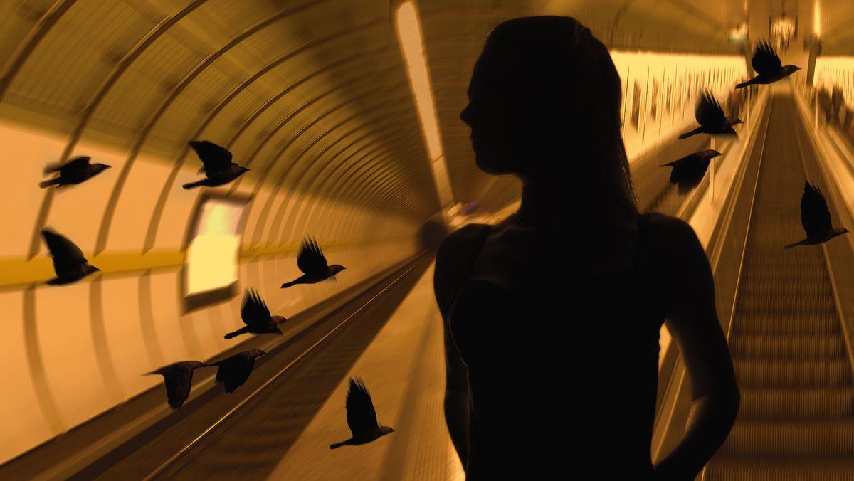 Schwarzer Schattenriss einer jungen Frau vor einem orange beleuchteten U-Bahn-Tunnel mit Rolltreppe, durch den schwarze Vögel fliegen