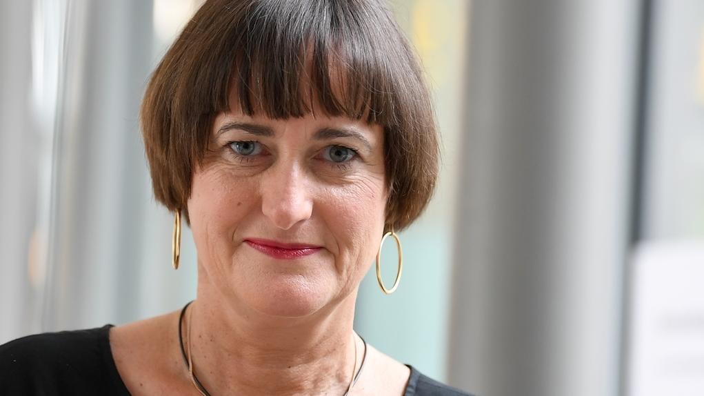 Martina Renner, Die Linke