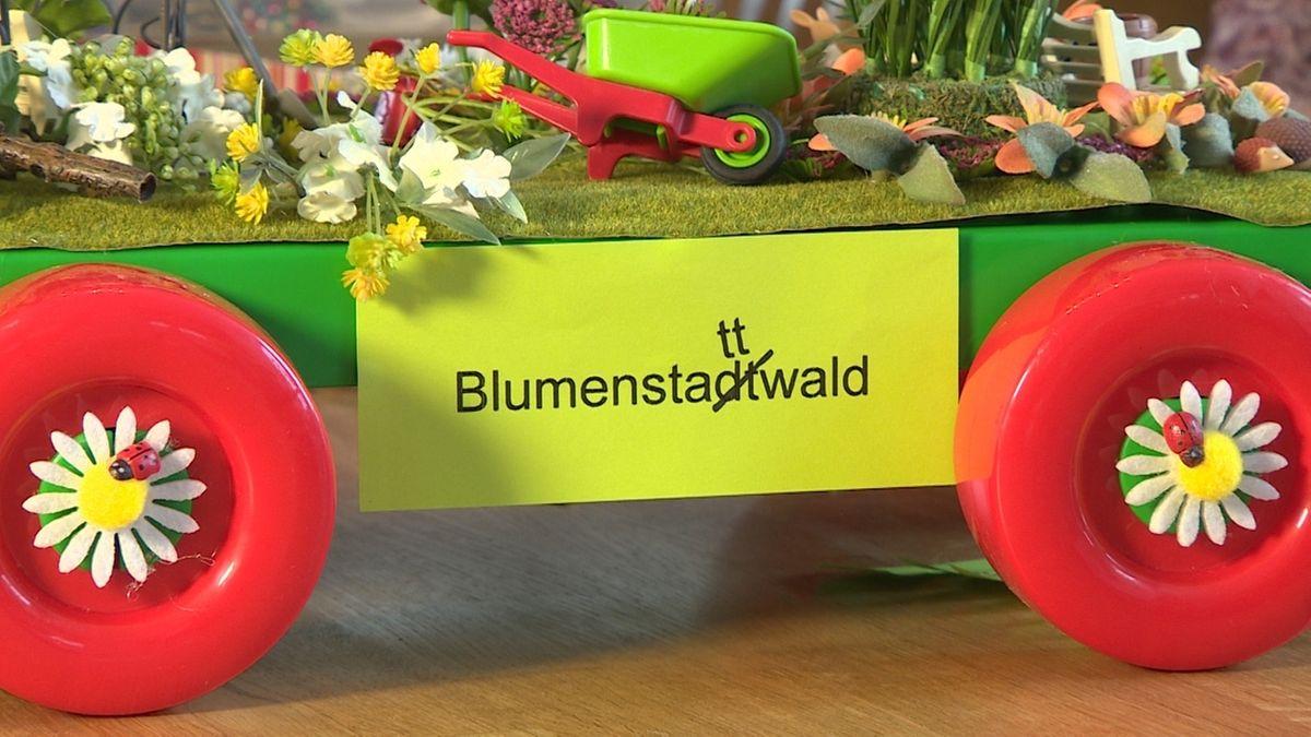 Schweinfurt: Mini-Faschingsumzug wegen Corona