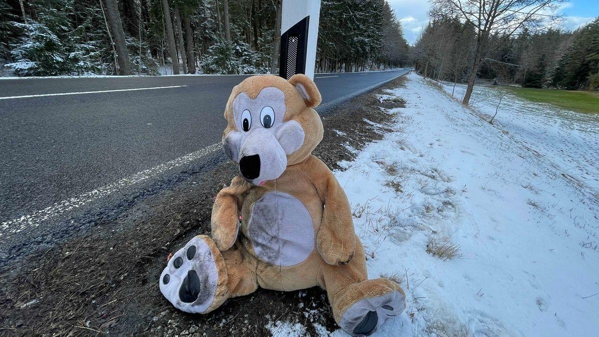 Ein braun-weißer Teddybär sitzt am Straßenrand, angelehnt an einen Leitpfosten, dahinter verschneite Bäume.