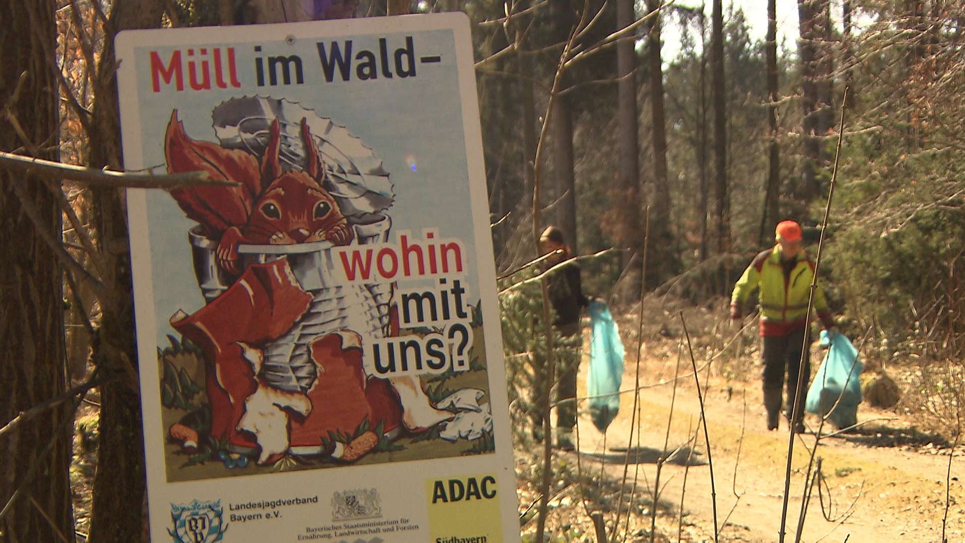 Illegale Müllentsorgung im Wald wird immer mehr zum Problem