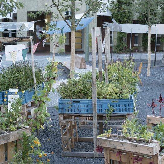 Top Urban Gardening: Garten in der Stadt - Nachtstudio | BR Podcast @HS_34