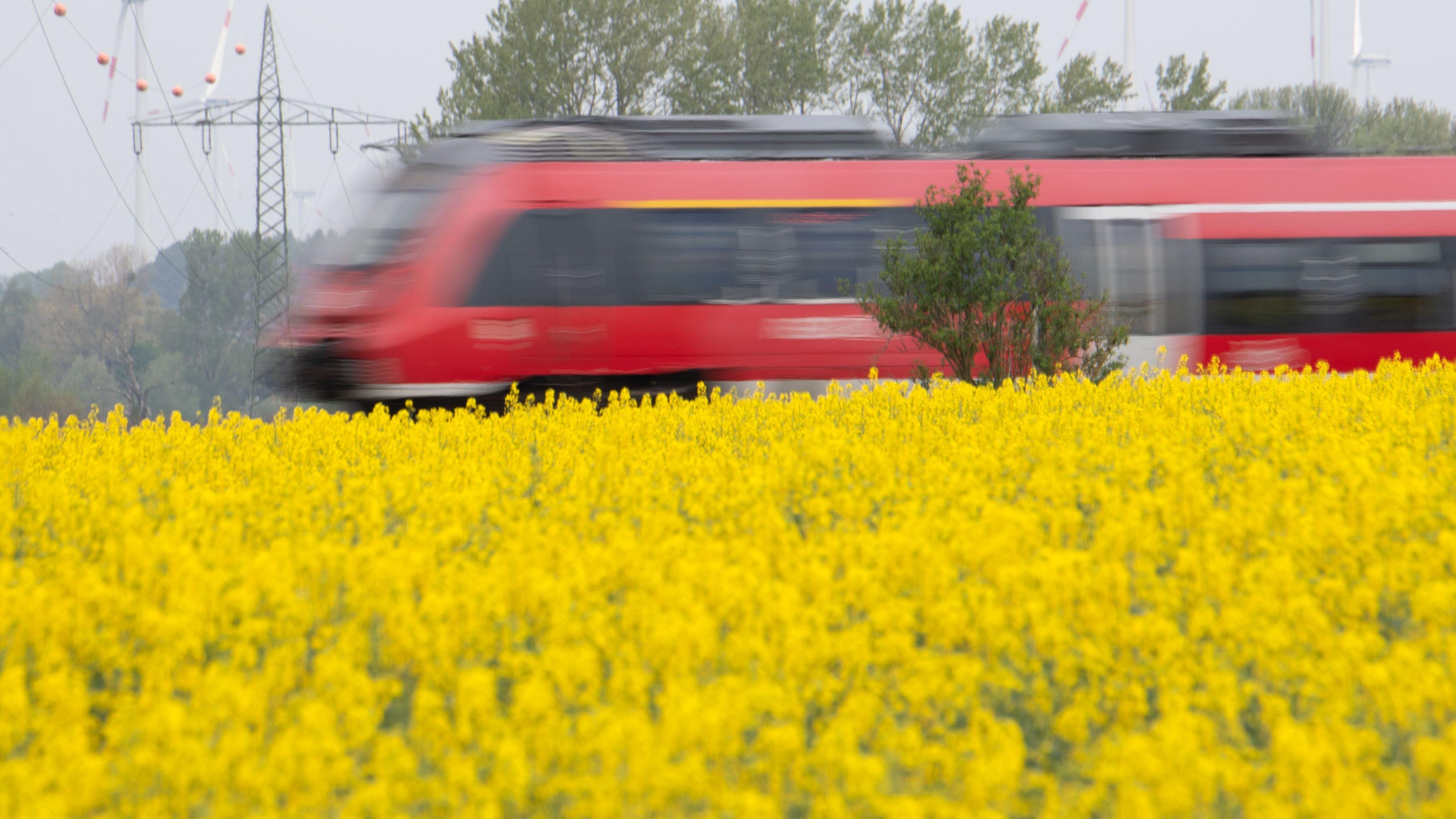 Regionalzug fährt an Rapsfeldern vorbei (Symbolbild)