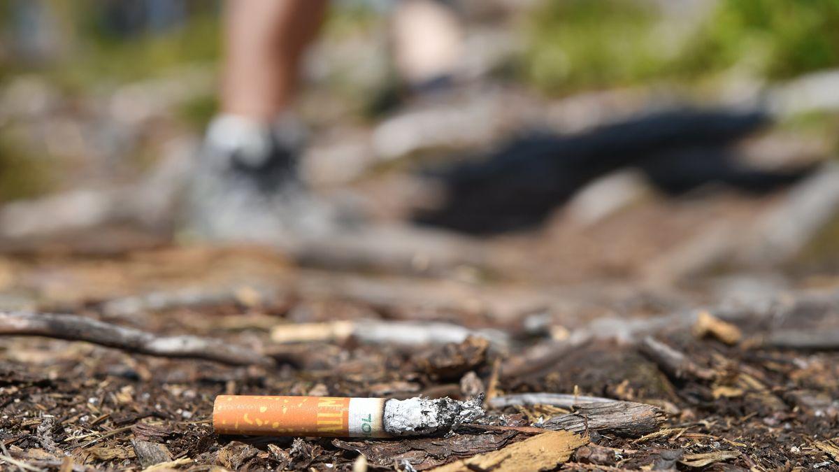 Zigarettenstummel liegt auf Waldboden