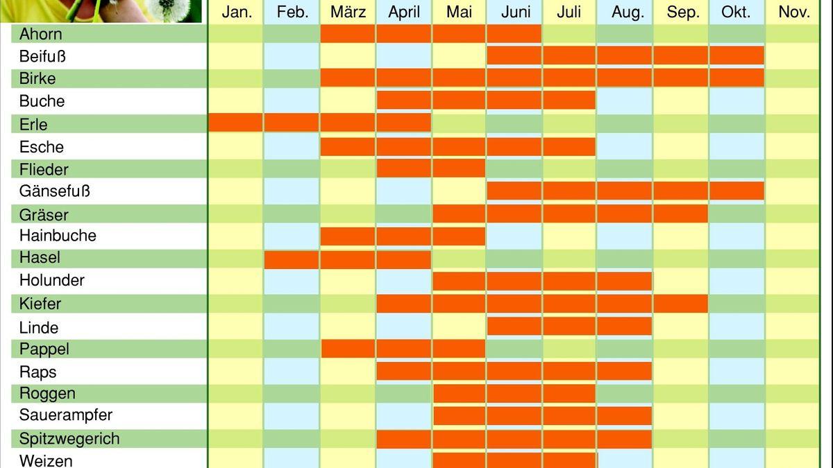 Ein Kalender nach Monaten, in dem die Pollenflugzeiten einzelner Pollen farblich markiert sind.