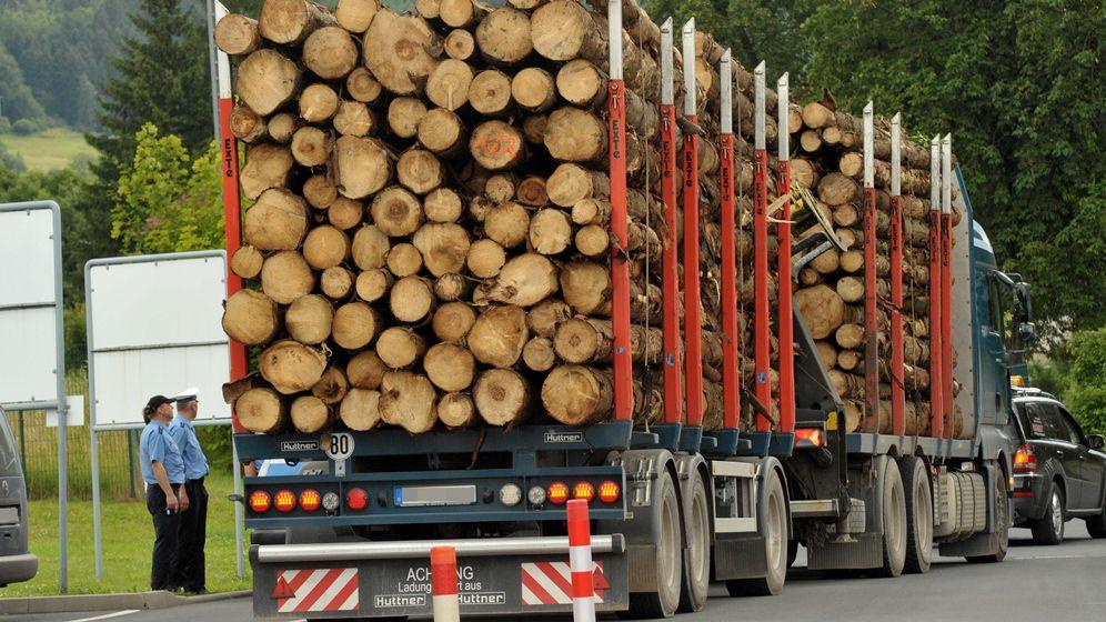 Symbolbild Holz-Laster | Bild:pa/zb/Stefan  Thomas