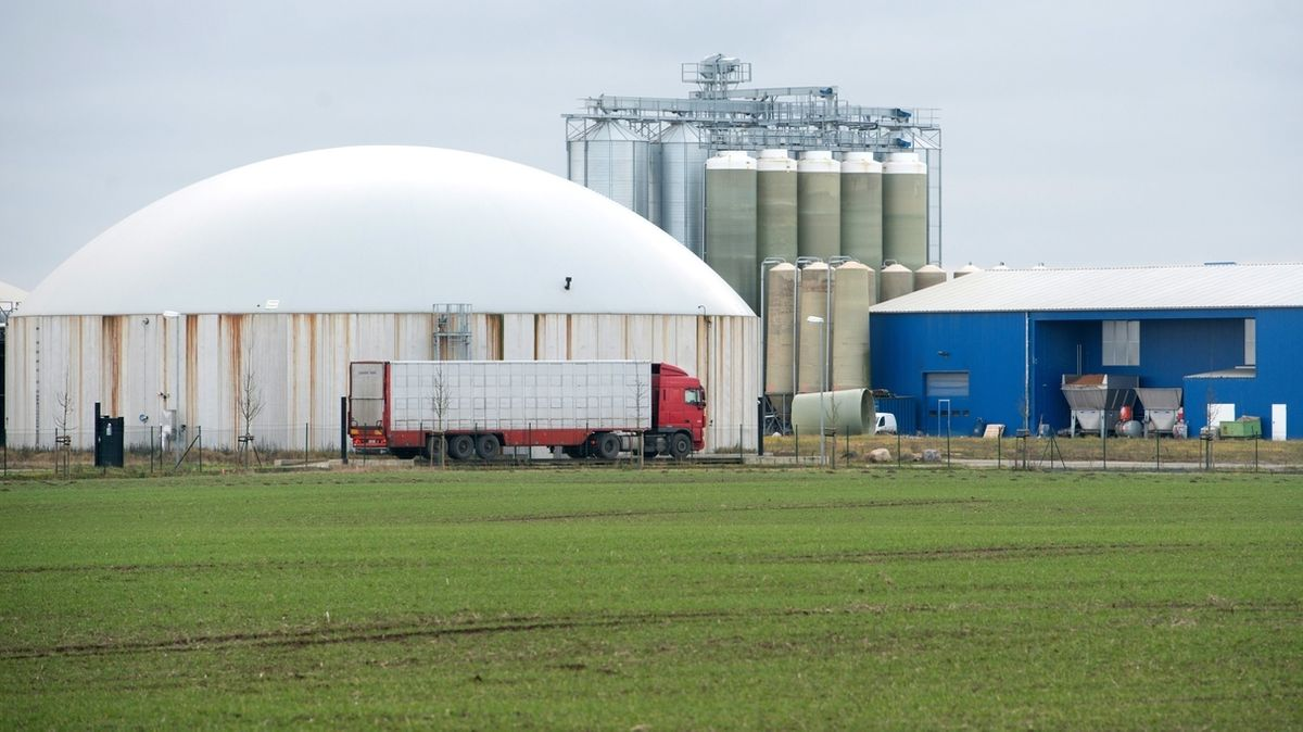B5 Reportage: Aus LPGs wurden Agrarfabriken