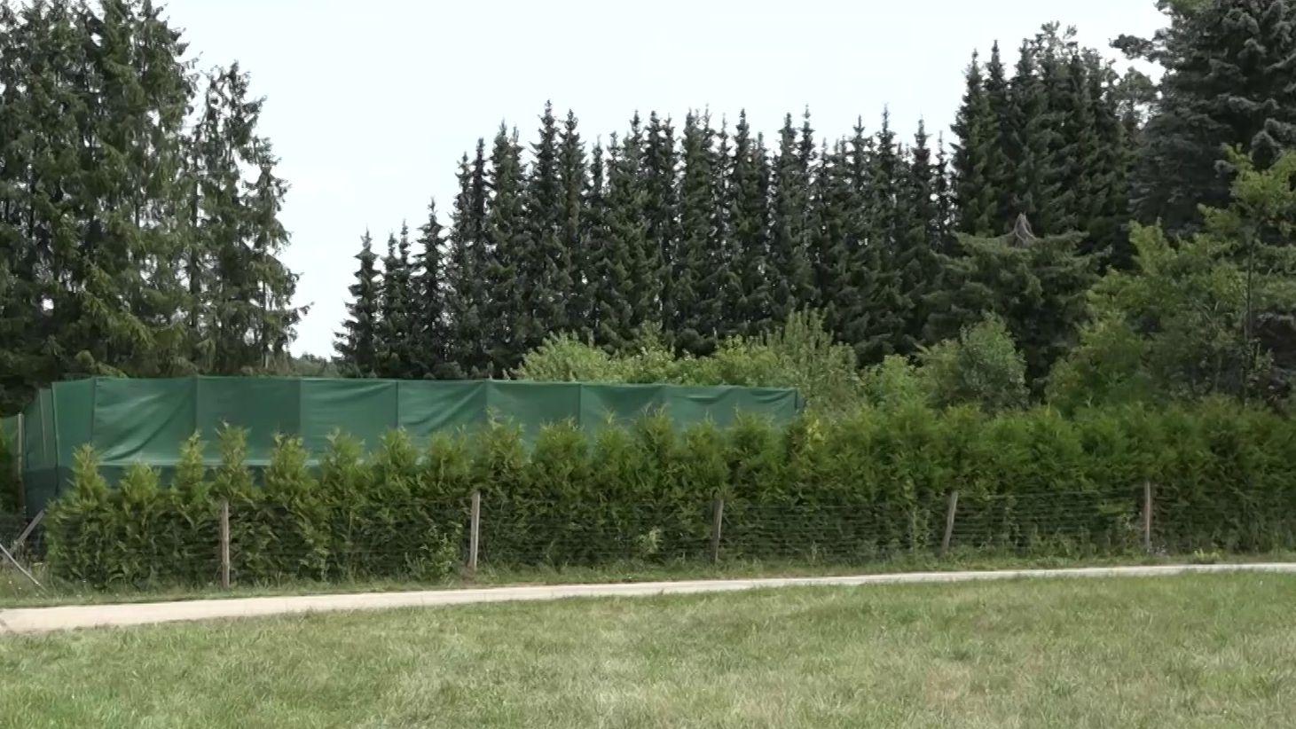 Haschischplantage bei Neuhaus/Pegnitz