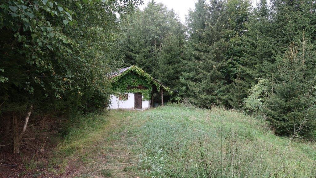 Das Wochenendhaus liegt abgeschieden in einem Waldstück. Von der Straße aus ist es nur schwer einsehbar.